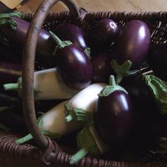 Aubergine is een van onze favoriete groenten, we kweken ze in alle soorten en maten.
