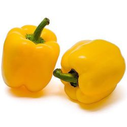 Capsicum annuum 'Golden California Wonder'
